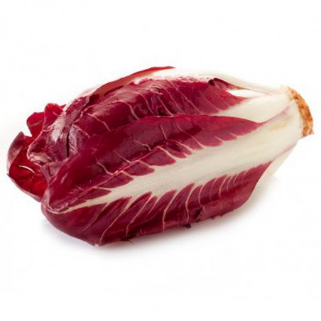 Radicchio di Treviso (EACH)-Vegetables-radicchio