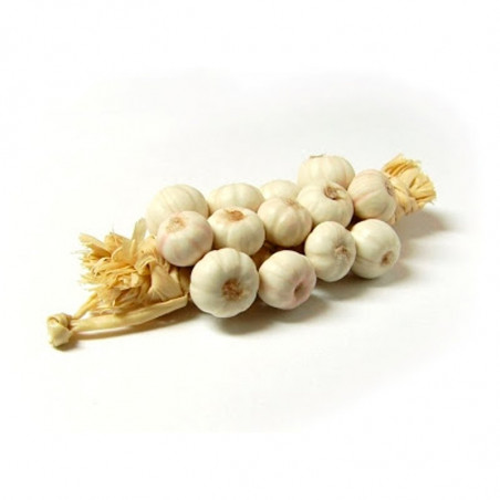 Large Ufita Garlic 100gr (9.40£/kg)-garlic-italian garlic